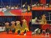 März 2013 Zirkus Casselly Gruppe 1
