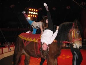 Zirkus Casselly 2, 4.3.13