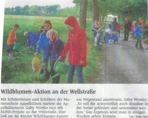 Wildblumen, Artikel WN